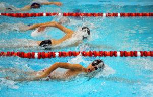 Юные пловцы спортивно-оздоровительных групп СОК «Дружба» померятся силами 16 марта