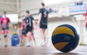 По окончании игр 2 группы НКНХ на волейбольную площадку выйдут команды 2 лиги